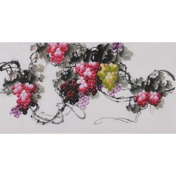 Grapes - CNAG003415