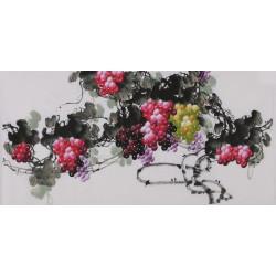 Grapes - CNAG003419