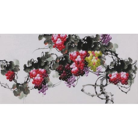 Grapes - CNAG003420