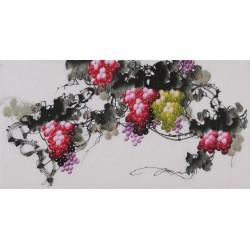 Grapes - CNAG003424