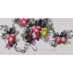 Grapes - CNAG003425