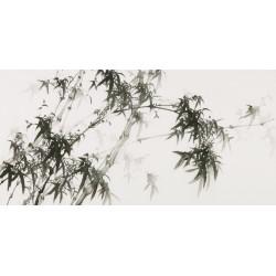 Ink Bamboo - CNAG003452