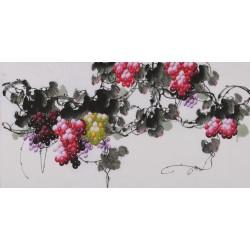 Grapes - CNAG003454