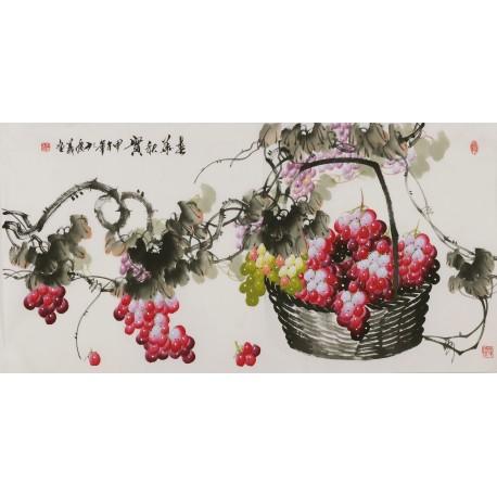 Grapes - CNAG003469