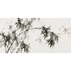Ink Bamboo - CNAG003474