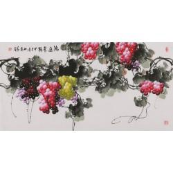Grapes - CNAG003495