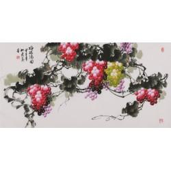 Grapes - CNAG003511