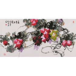 Grapes - CNAG003516