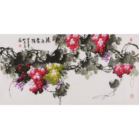 Grapes - CNAG003522