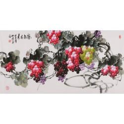 Grapes - CNAG003525