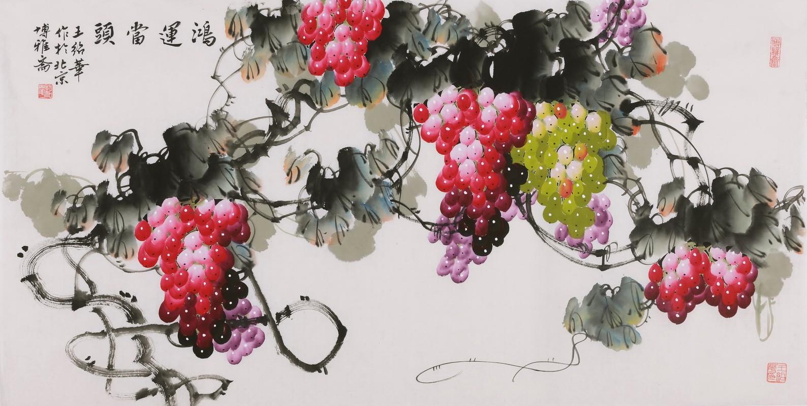 Grapes - CNAG003527