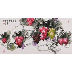 Grapes - CNAG003531