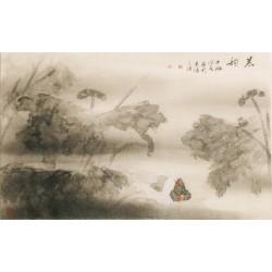 Ducks - CNAG003547