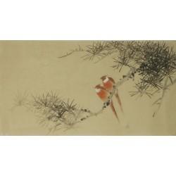 Paradise Flycatcher - CNAG003558