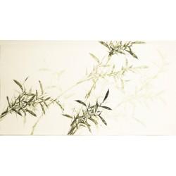 Green Bamboo - CNAG003575