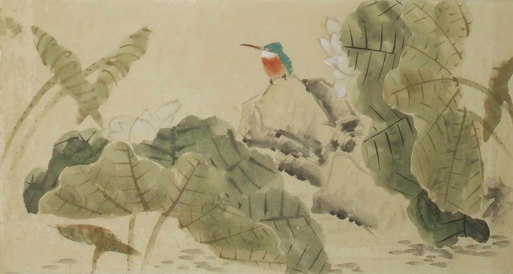 Kingfisher - CNAG003595