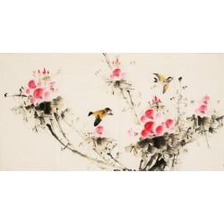 Hibiscus - CNAG003622
