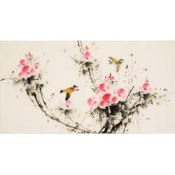 Hibiscus - CNAG003624