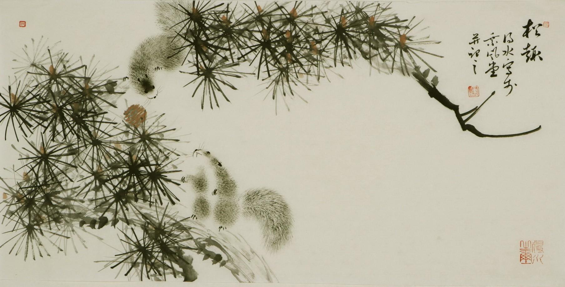 Squirrels - CNAG003667