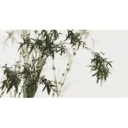 Ink Bamboo - CNAG003675