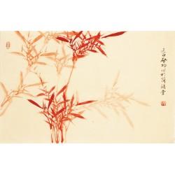 Bamboo - CNAG003709