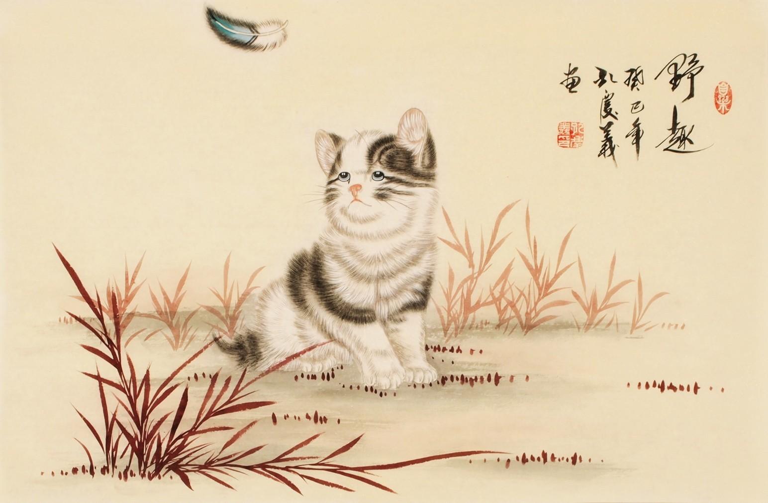 Cats - CNAG003735