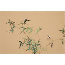 Bamboo - CNAG003748