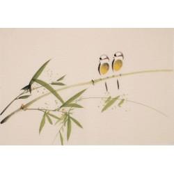 Green Bamboo - CNAG003756