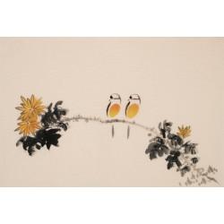 Chrysanthemum - CNAG003766