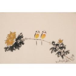 Chrysanthemum - CNAG003773