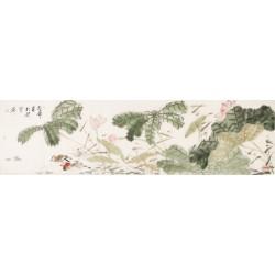 Mandarin Duck - CNAG003881