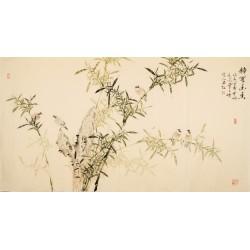 Bamboo - CNAG003932