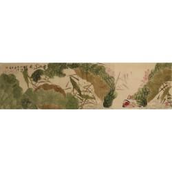 Mandarin Duck - CNAG003985