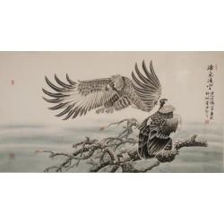 Eagle - CNAG003996
