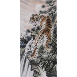 Tiger - CNAG000040