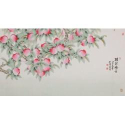 Peach Blossom - CNAG004093