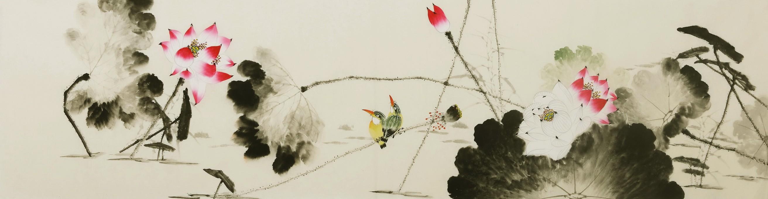 Kingfisher - CNAG004125