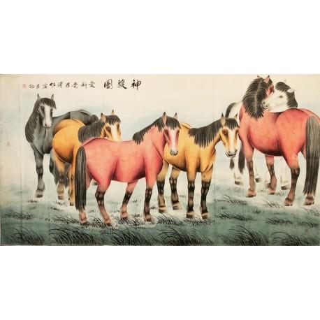 Horse - CNAG004182