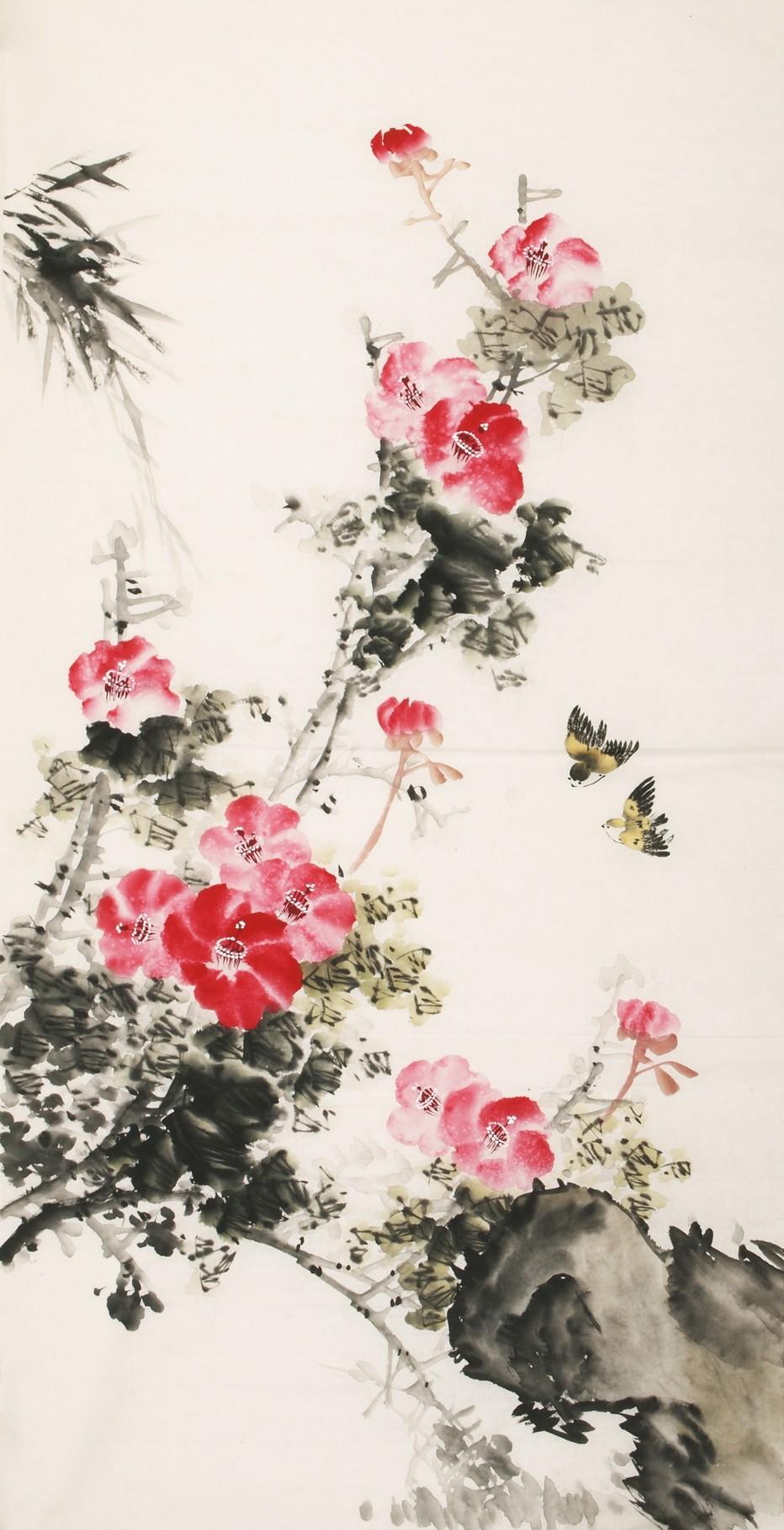 Hibiscus - CNAG000439