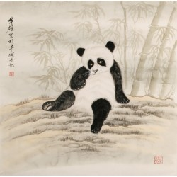 Panda - CNAG004468