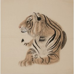 Tiger - CNAG004472