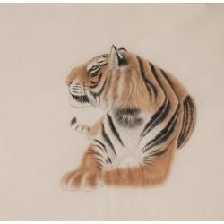 Tiger - CNAG004478