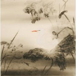 Egret - CNAG005407