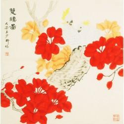 Parrot - CNAG005412