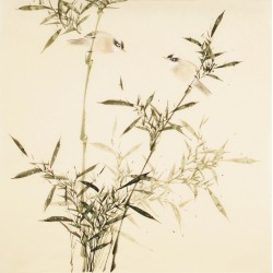Green Bamboo - CNAG005450