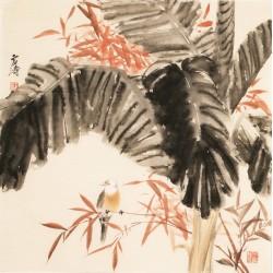 Bamboo - CNAG005570