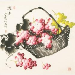 Grapes - CNAG005572