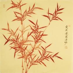 Bamboo - CNAG005573