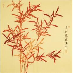 Bamboo - CNAG005574