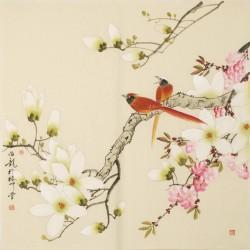Paradise Flycatcher - CNAG005611